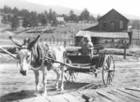 "The Ute Pass Historical Society presents ""Ute Pass Childhood in the Early Days"""